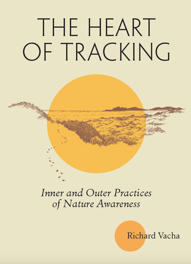 Heart of Tracking